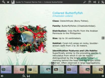 Guide To Tropical Marine Fish 3, il terzo volume dell'ottima guida ai pesci tropicali