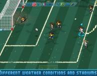 Scarica gratis il gioco Pixel Cup Soccer 16
