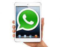 In sviluppo l'app nativa di WhatsApp per iPad!
